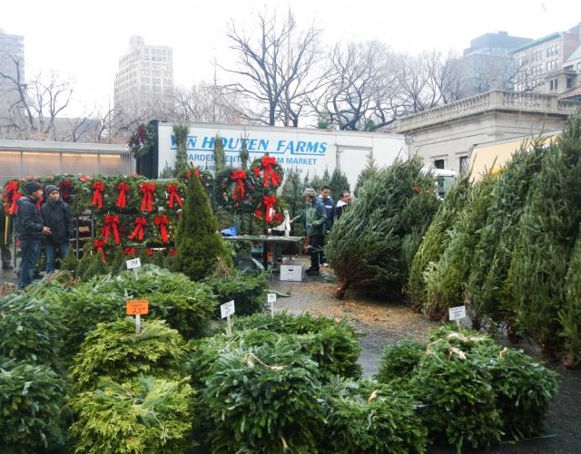christmas trees1